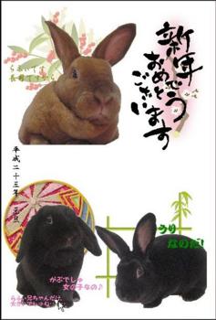 2011年賀状たて.png