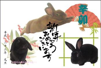 2011年賀状よこ.png